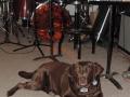 Recording_Guard-over-fav-band.jpg